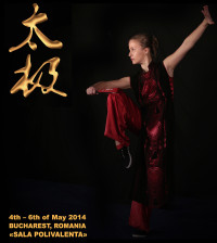 taijiquan and internal EK Bucharest