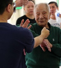 ip chun interview 2015
